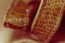 Leather Strap For A Handbag Made Of Genuine Leather Of The African Monitor Lizard (or Varanus Niloticus). Selective Focus, Close-up. White Balance Shift.