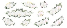 Collection Of Flower Compositions. White Orchid, Eucalyptus, Various Plants And Flowers, Gypsophila