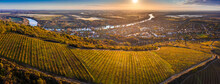 Tokaj, Hungary - Aerial Panoramic View Of The World Famous Hungarian Vineyards Of Tokaj Wine Region With Town Of Tokaj, River Tisza And Golden Sunrise At Background On A Warm Autumn Morning
