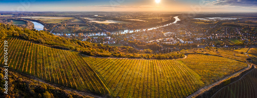 Fotografie, Obraz Tokaj, Hungary - Aerial panoramic view of the world famous Hungarian vineyards o