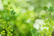 Fresh Clover Leaves On Green Background. St. Patrick's Day Celebration