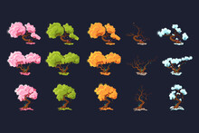 Trees At Different Times Of The Year. Trees In Each Of The Four Seasons.