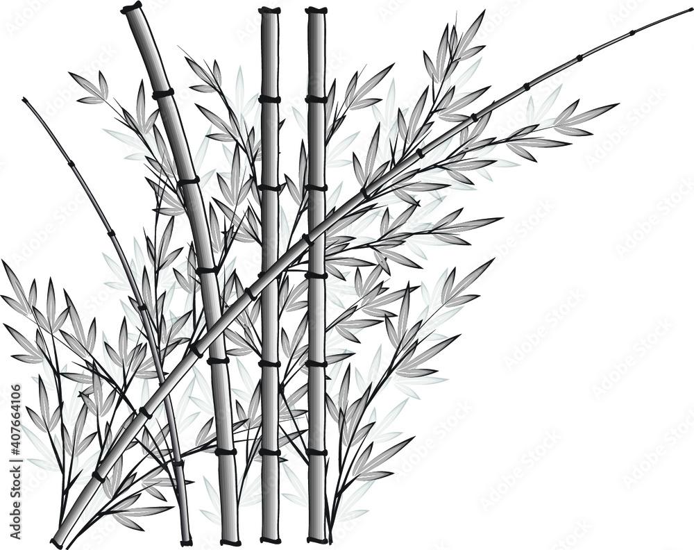 Fototapeta vector design bamboo icon background