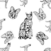 Seamless Pattern Of Hand Drawn Sketch Style Servals And Savannah Cats Isolated On White Background. Vector Illustration.