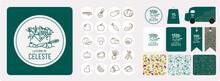 Production à La Ferme De Légumes Et Fruits Bio De Saison, Identité Visuelle, Logo, Tampon, Motif, Sac, étiquette, Mockup,