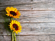 Sunflowers Sitting On Wooden Surface Shot From Above With Space For Text. Top View, Flat Lay, Copy Space. Summer Background. Mother`s Day Card Template.