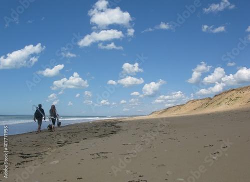 Carta da parati Promenade sur la plage de Sauveterre en Vendée