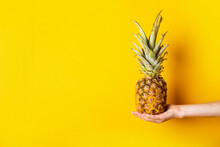 Woman's Hand In The Palm Holds A Whole Pineapple On A Torn Yellow Background