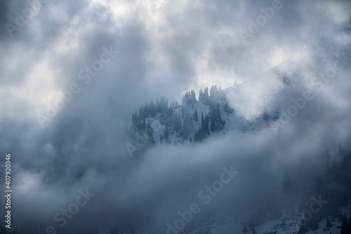 Fototapeta Clouds surrounded trees on a mountainside in the snow in winter