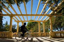 Silhouette Man Riding A Bike In The Beautiful Garden.