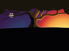 Tree Silhouette At Night And Day. Silhouette Of A Lone Tree Against A Beautiful Sunset. Background Nature Vector Illustration