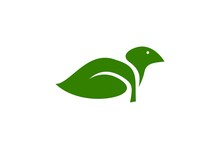 Bird Leaf Illustration. Natural Animal Logo.
