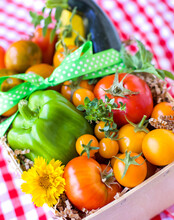 Garden Fresh Vegetables In Basket With Red And White Checkered Cloth