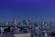 夜の東京 ビル群 都市景観