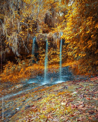 Fototapety, obrazy: waterfall in autumn