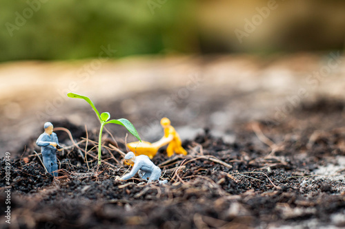 Fotografia Miniature people : Nature exploration team is planting trees for a green world project