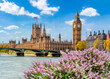 Big Ben tower and Houses of Parliament in spring, London, UK