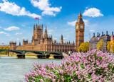 Fototapeta Big Ben - Big Ben tower and Houses of Parliament in spring, London, UK