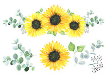 Watercolor Sunflowers With Eucalyptus Leaves Bouquet. Floral Hand Painted Illustration.
