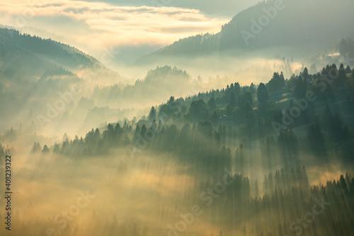 Photo Schwarzwald