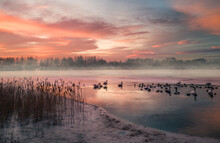 Frozen Lake By Wintry Sunrise II