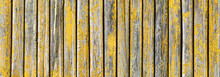 Panoramic Wood Texture. Wooden Desk Pattern. Wood Panoramic View. Rustic Tree Desk With Knots Pattern. Peeling Paint Wood. Village Building Construction. Wood Industry Texture.