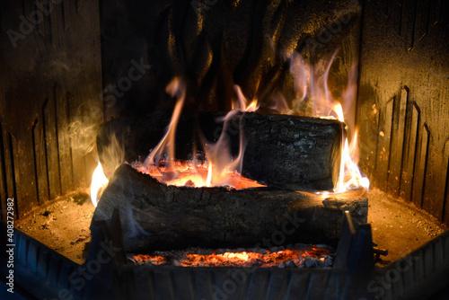 Canvas Print Bûches de bois brûlant dans l'âtre d'une cheminée