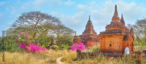 Fotografie, Obraz The shrines of Khaymingha Pagoda, Bagan, Myanmar