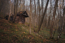 A Scary Looking Crumbling Abandoned Cottage In A Late Autumn Forest.