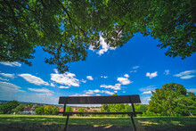 Wooden Bench Under The Tree In A Park On A Sunny Day