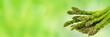 grüner spargel isoliert auf grünem abstraktem hintergrund