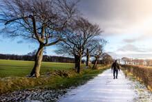 Man Walking His Dog In Winter