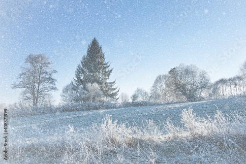 frozen landscape #408371999