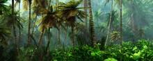 Jungle, Beautiful Rainforest In The Fog, Palm Trees In The Haze, Jungle In The Morning In The Fog