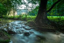 Stream Amidst Forest In Swabian Alb Mountain, Germany