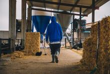 Male Farmer Wearing Blue Hood Walking In Stable