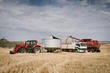 Harvesting Broadacre Crops In The Wheatbelt In Western Australia