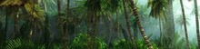 Jungle, Beautiful Rainforest In The Fog, Palm Trees In The Haze, Jungle In The Morning In The Fog