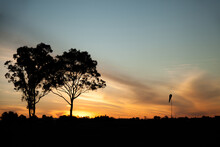 Silhouetted Trees And Wind Sock At Small Rural Airstrip