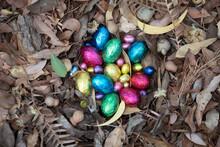 Foil Easter Eggs In Nest Of Gum Leaves