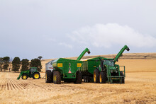 Tractors And Bins In Stubble Paddock At Harvest Time
