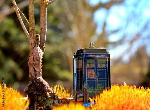 Canvas Print TARDIS