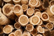Full-frame Shot Of Timber Stack