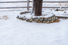 Snow Covered Ground With Tree Trunk And Wooden Fence
