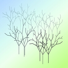 Abstract Groups Of Isolated Bare Trees, On A Blue-green Gradient Background