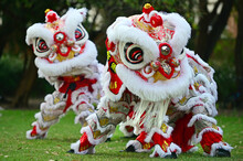 Chinese Lion Dragon Dancing During Chines New Year Holiday Celebration