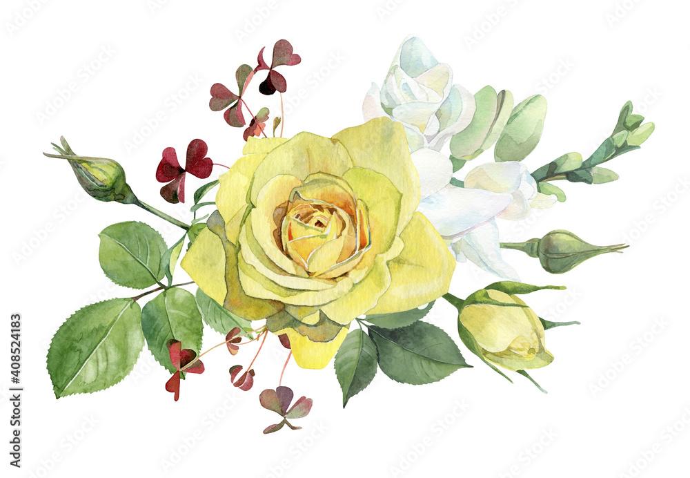 Fototapeta Watercolor one yellow rose on white background