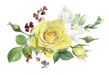 Watercolor One Yellow Rose On White Background