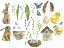 Set Is Drawn By Hand On The Easter Theme. Rabbit, Chicken, Butterfly, Cup, Butterflies, Nest With Eggs, Birdhouse, Flowers