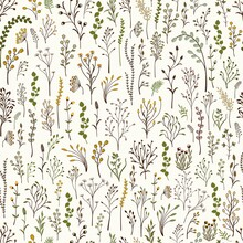 Seamless Pattern. Set Of Colorful Wild Plants.